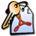 Advanced PDF Password