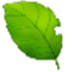 爱萧加速器 V3.7.0 绿色