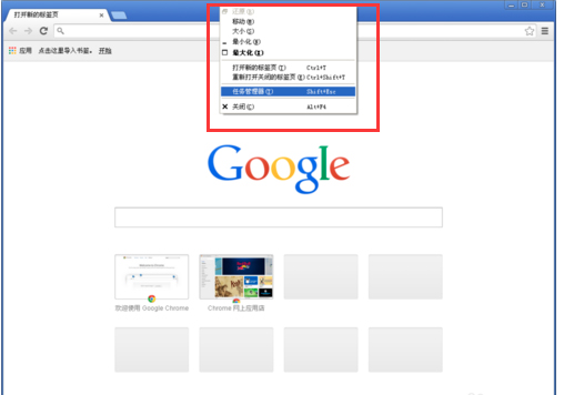 谷歌浏览器(Google Chrome) V58.0.3029.110